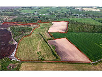 Ballycommon, Tullamore, Offaly