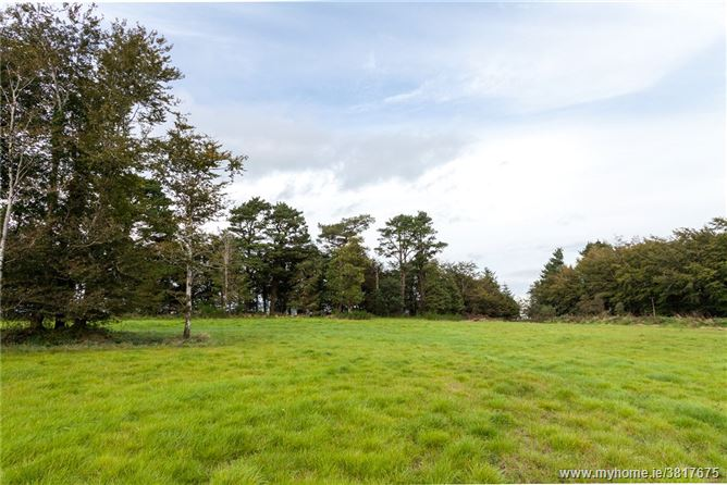 Site At, Lackan, Gorey, Co Wexford
