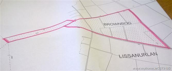 Photo of Brownbog, Lissanurlan, Longford, Longford