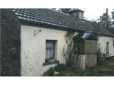 Main image of Ballywalter, Hollymount, Mayo