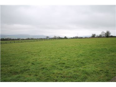 Main image of C.1.8 Acre Site, Dunlavin, Wicklow