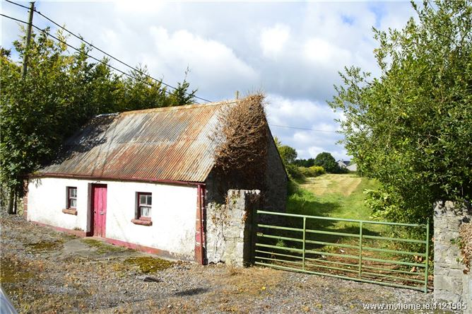 Photo of Site With Cottage, Ballylynan, Via Athy, Co. Laois, R14Y642