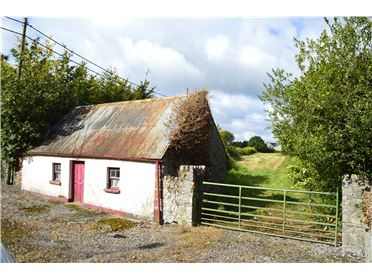 Photo of Site With Derelict Cottage, Ballylynan, Via Athy, Co. Laois, R14Y642