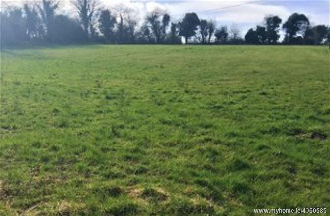 Main image for Rabbitpark, Ardagh, Longford