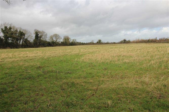 Main image for Land At Celbridge, Celbridge, Kildare
