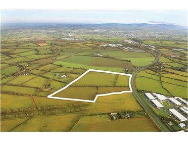 Main image of 48.75 Acres at Mooretown, Naas, Kildare