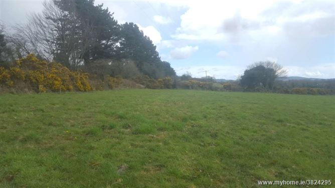 Seskin Hill, Carrick On Suir, Carrick-on-Suir, Co. Tipperary