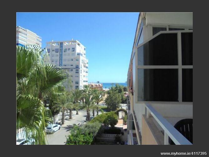 Avenida, 03540, Alicante / Alacant, Spain
