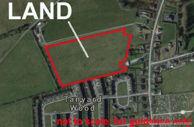 Land with Development Potential, Tanyard Wood, Millstreet, Cork