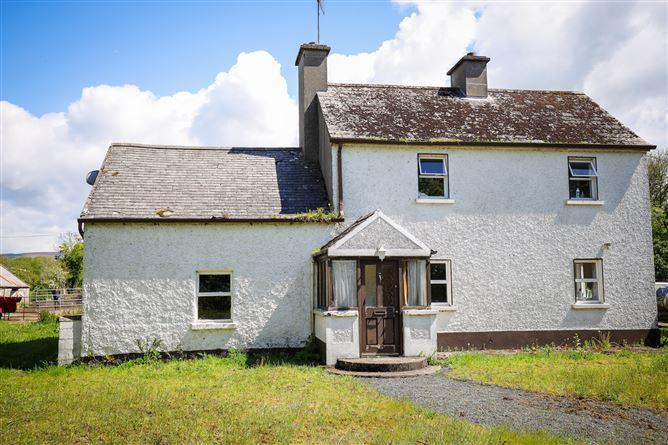 Main image for Farmhouse on c. 9 Acres at Ballinree, Borris, Co. Carlow, Borris, Carlow, R21H738