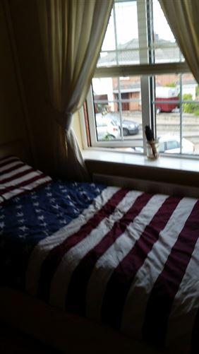 Main image for Mandy ' home close to city centre, Clonee, Dublin 15