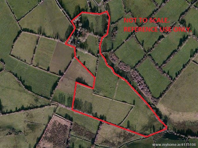 Birrinagh, Moyne, Longford