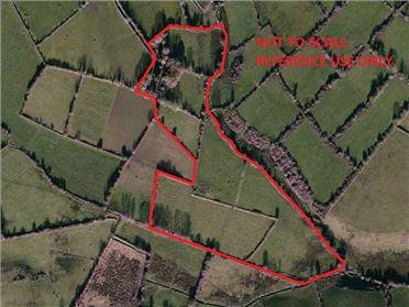 Main image of Birrinagh, Moyne, Longford