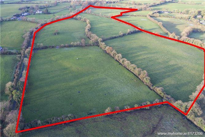 56 Acres, Boltown, Kells, Co. Meath