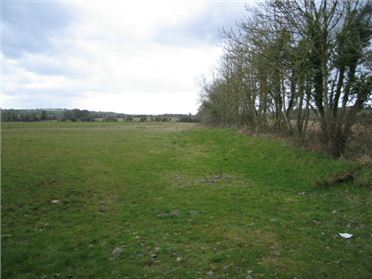 Main image of 21.9 Acres at Collierstown, Bellewstown, Co. Meath
