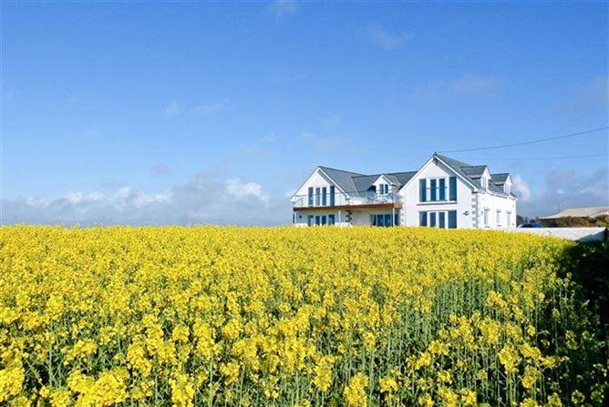 Main image for Trevalga,Porthcothan Bay,Cornwall,United Kingdom