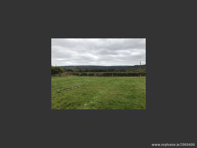 Glenkeen Lower , Clonaslee, Laois