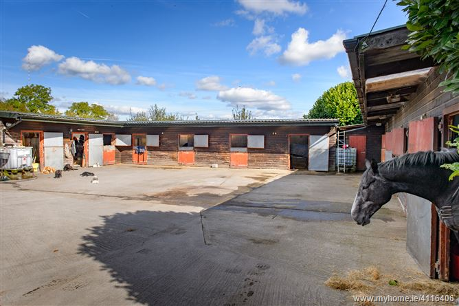 Photo of 14.2 Acres with 12 Stables, Clonmore, Tullamore, Offaly