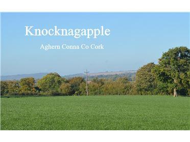 Photo of Knocknagapple, Aghern, Conna, Co Cork