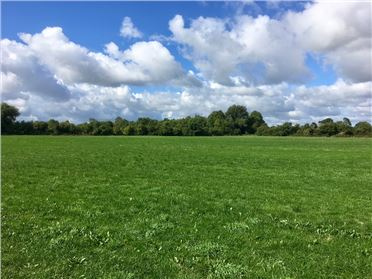 Photo of c. 46.5 Acres (In Lots), Kill East & Painstown, Kill, Kildare