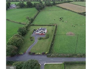 Photo of Abbeylands, Mount Bellew, Galway