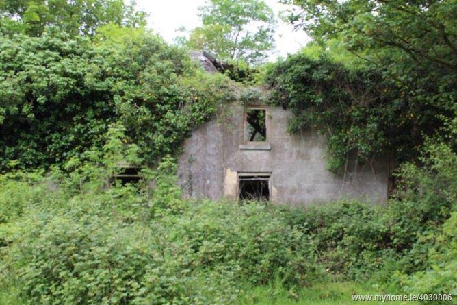 Ballybricken South, Grange, Limerick