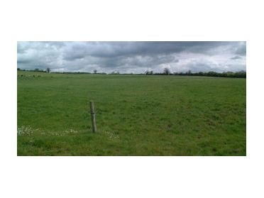 Main image of Lagganstown - Circa 63 acres, Golden, Co. Tipperary