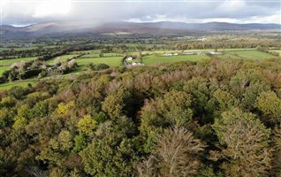 17 Acres at Knockaarum, Burncourt, Tipperary