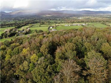 Main image of 17 Acres at Knockaarum, Burncourt, Tipperary