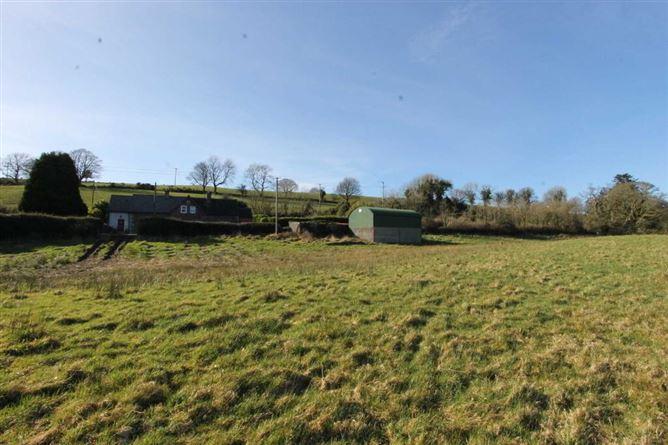 Main image for Garraunbeg, Killoscully, Newport, Co. Tipperary