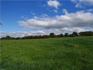 Main image of Dunkitt, Kilmacow, Kilkenny