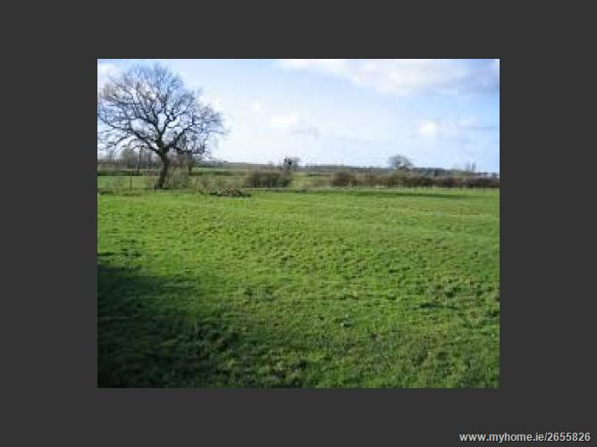 Barstown, Dunboyne, Co. Meath -  Approx 29 acres