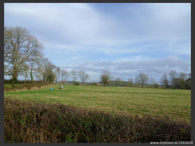 Building Site, Drumsna, Leitrim