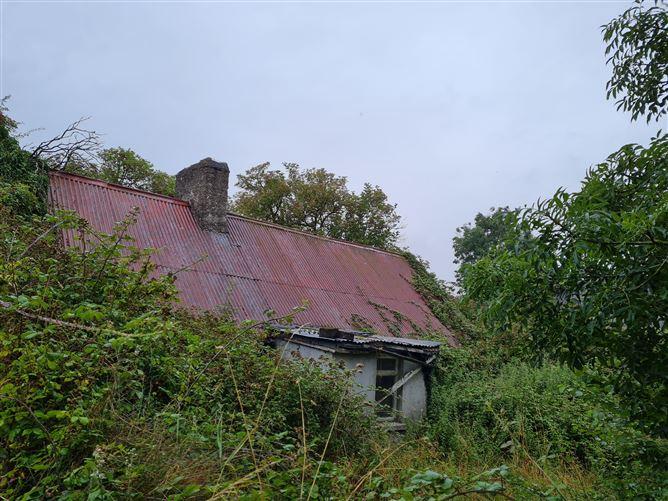 Main image for Ballyfoyle, Maganey, Laois