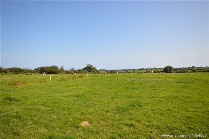 Main image for Ballylurkin, Kilmuckridge, Wexford