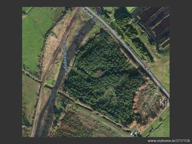 Killeen Ballnonty, Thurles, Tipperary