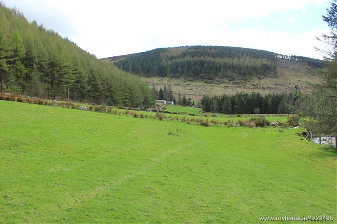 C. 9 Acres of Land at Ballybraid, Glenmalure, Wicklow
