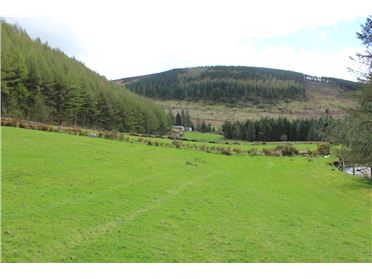 Photo of C. 9 Acres of Land at Ballybraid, Glenmalure, Wicklow