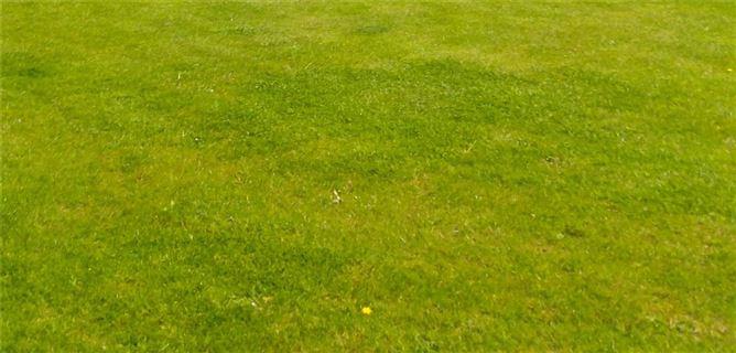 Main image for Rustyduff Lower,Knockanarrigan,Donard,Co. Wicklow