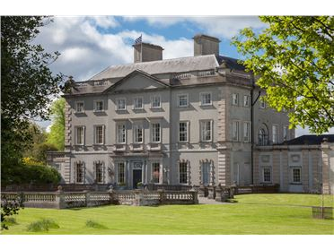 Fabulous Country House For Sale In Ireland Myhome Ie Download Free Architecture Designs Photstoregrimeyleaguecom
