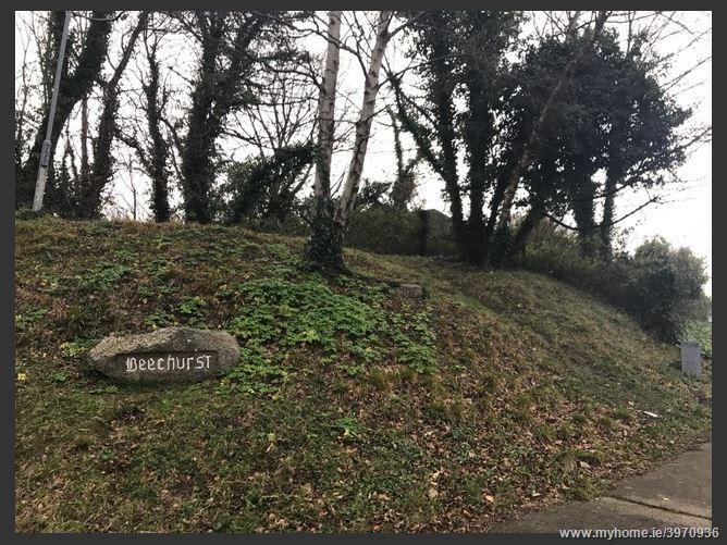 Main image of Beechurst, Bray, Wicklow