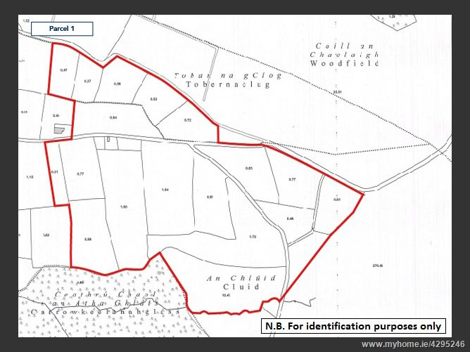 Land comprised within part of Folio GY29775F at Belwell, Dunmore, Co. Galway