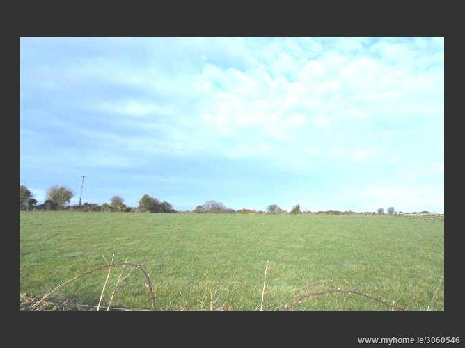 Ratheenduff, Gorey, Wexford