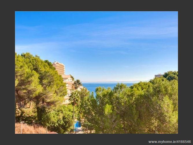 Calle, 07181, Calvià, Spain