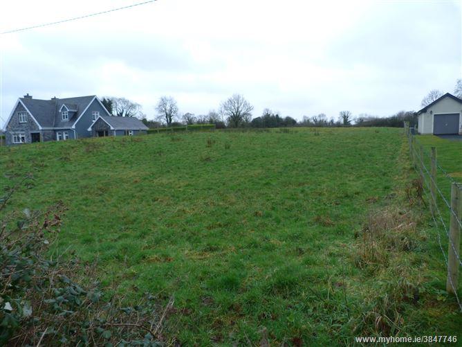 Newpark / Rossmanagher, Sixmilebridge, Clare
