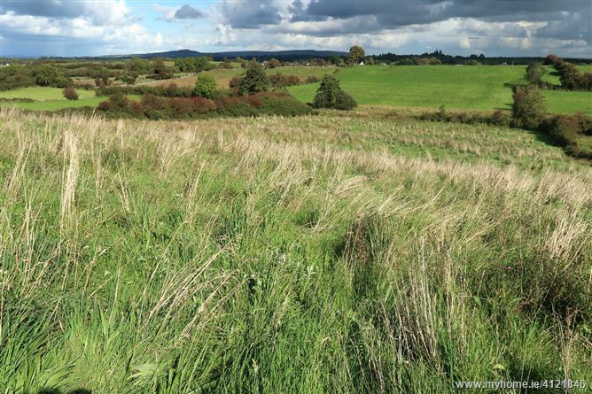 Public Auction of Lands Carrowclogher & Knockmoyleen, Ballyheane , Castlebar, Mayo