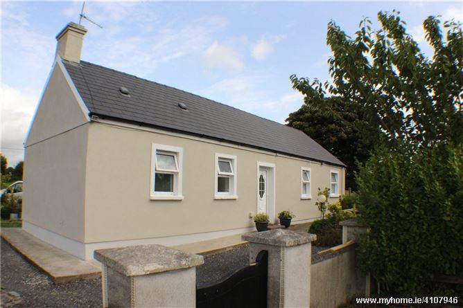 Woodenstown, Cahir, Co Tipperary, E21Y702