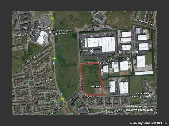 Magna Business Park, Citywest Road, Dublin 24