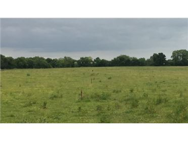 Main image of 22.5 ACRES - CLONCARNEEL, Kildalkey, Meath