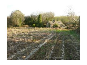 Main image of Gurteen, Bandon, Co. Cork